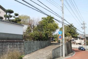 千葉 Streets 9