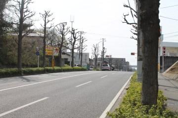 千葉 Streets 12