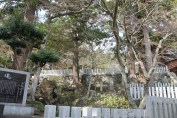 筑波山神社 8