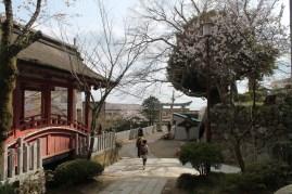筑波山神社 10