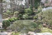 A lovely little pond
