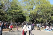 渋谷代々木公園 13