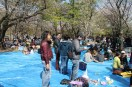 渋谷代々木公園 18