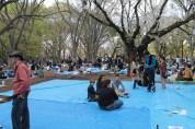 渋谷代々木公園 35