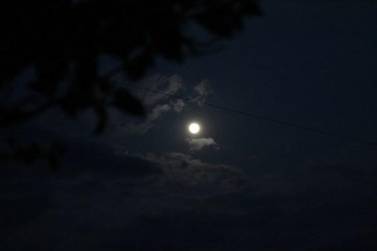 指宿 Streets Night 4