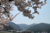 長野県 松本 23
