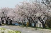 長野県 松本 60