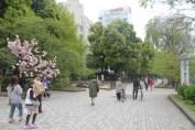 東京上野公園 24