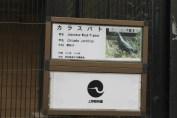 東京上野動物園 8
