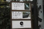 東京上野動物園 16