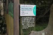 東京上野動物園 92