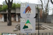東京上野動物園 96