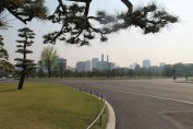 A somewhat desolate feeling park next to the Imperial Palace grounds