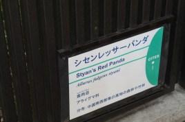 東京上野動物園 130