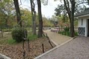 大阪城公園 8
