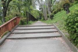 A path leading somewhere