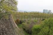 大阪城公園 17