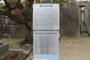 大阪城公園 25