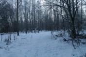 Raahe Winter 79