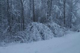 Raahe Winter 11