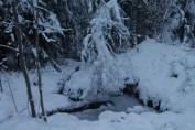 Raahe Winter 25