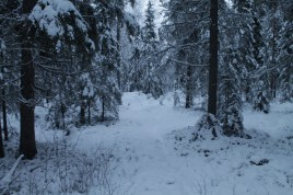 Raahe Winter 28