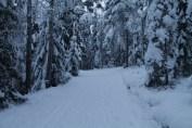 Raahe Winter 35