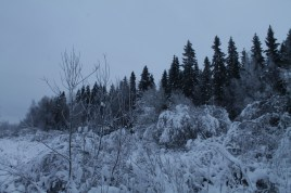 Raahe Winter 38
