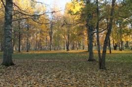 Joensuu Oct18_26