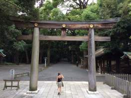 Ворота Синто, деревянные.