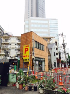 Между небоскребами втиснуты крохотные здания, Токио.