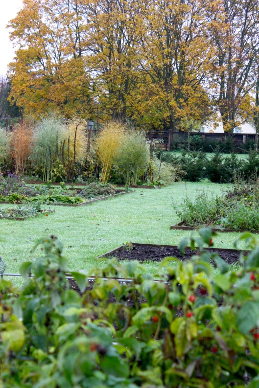 The Kitchen Garden November