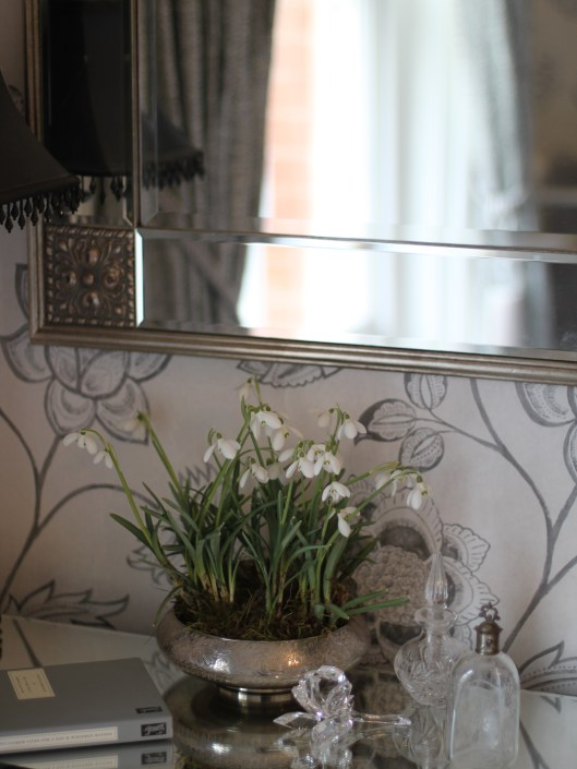 Snowdrops on Dressing Table