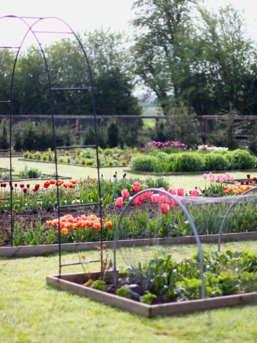 The Cutting Garden - April