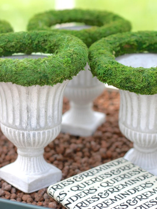 Urns-With-Moss-Rings