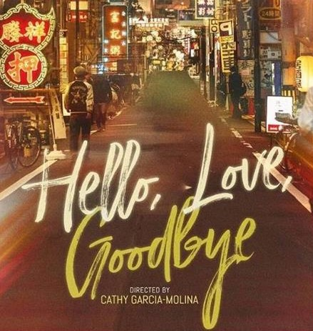 Hello Love Goodbye 2019 Movie