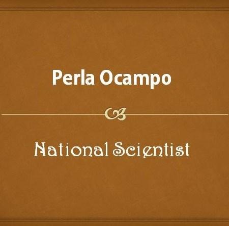 Perla Ocampo