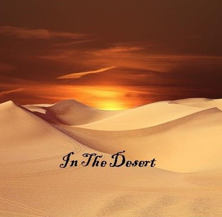 In The Desert (December 15 Reflection)
