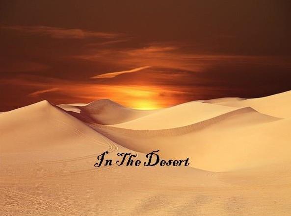 In The Desert (December 15 Reflection)