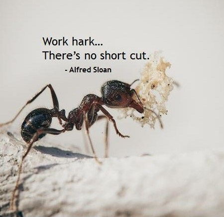Alfred Sloan Quote