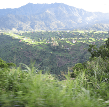 Mayoyao View