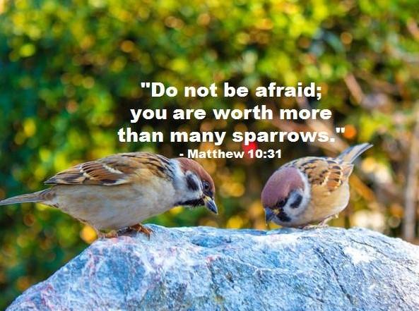 Inspiring Bible Verse for Today June 21