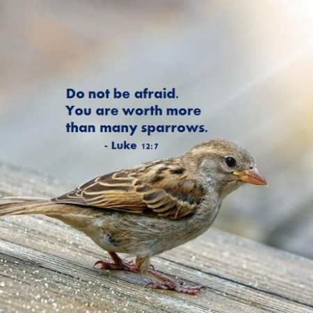 Inspiring Bible Verse for Today October 16