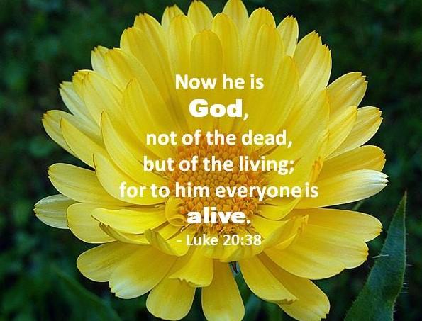 Inspiring Bible Verse for Today November 21