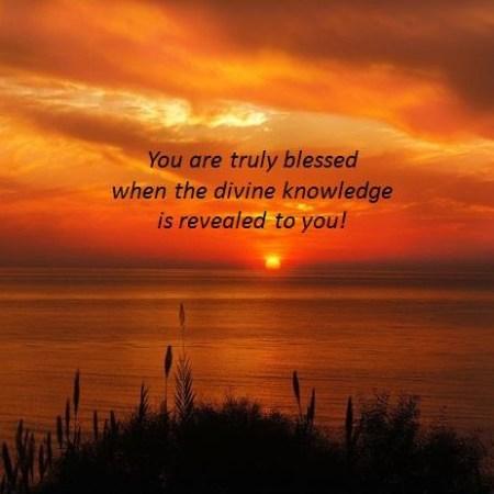 Gospel Reflection for June 29 2021