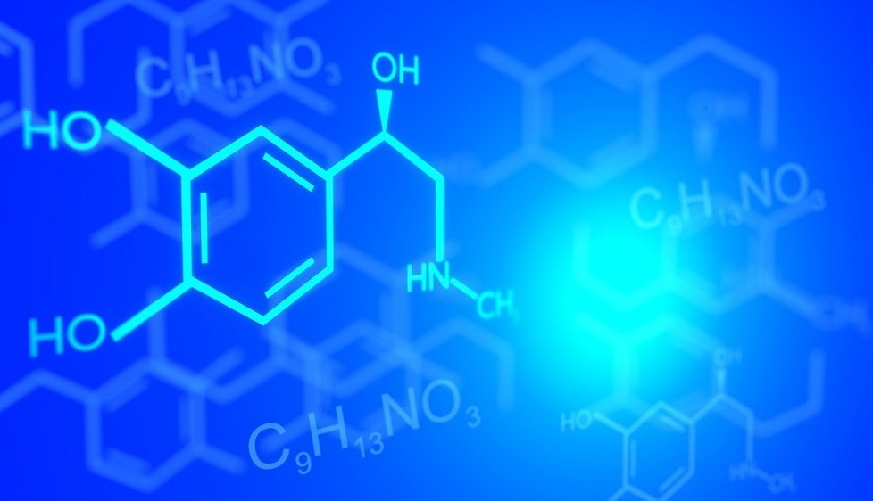 The Chemistry of Creating Effective Leadership - People Development Network