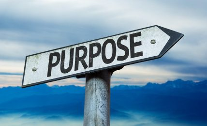 How To Establish The Real Purpose Of Training - People Development Magazine