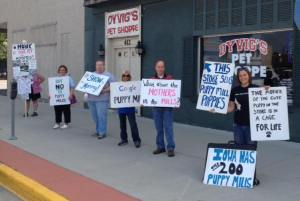 Our peaceful protests in front of Dyvig's Pet Shoppe