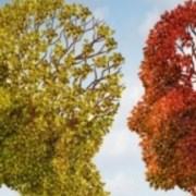 Νέο σύστημα για την ανίχνευση της νόσου Αλτσχάιμερ