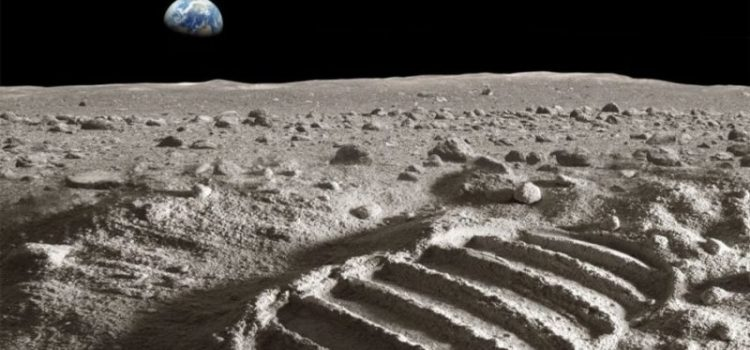Σπόρος βαμβακιού βλάστησε στη Σελήνη
